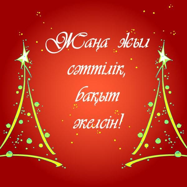 Сіздерге Жаңа жылға тілерім............