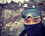 Ғаламтордаға Антарктида
