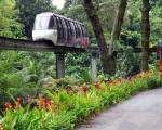 Мегаполис табиғатын қорғау: Сингапур тәжірибесі