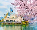 Корея: оқу жүйесі, корей тілін үйрену, саяхат...
