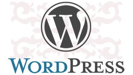 9000 WordPress блогы хакерлік шабуылға ұшырады