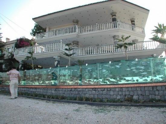 Ең ерекше қақпа-аквариум
