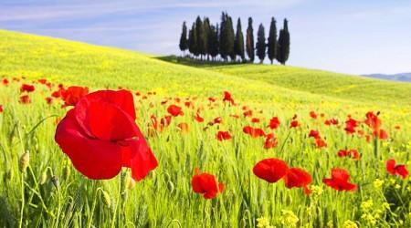 Тосканның таңғажайып пейзаждары