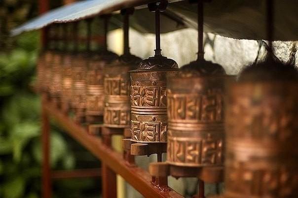 Непал данышпандары кеңес береді