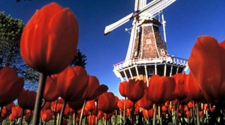 Голландия жайлы не білеміз?