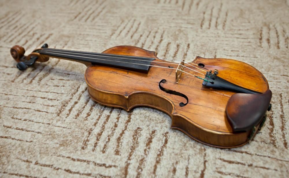 Өрмекші торынан жасалған скрипка