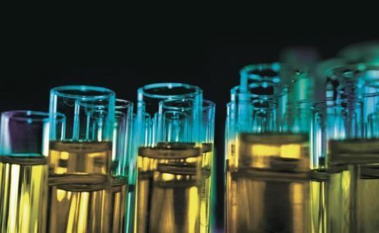 Корейліктер бактериялардан бензин алуды үйренді