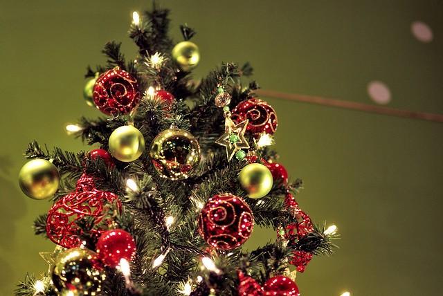 Жаңа жылға шырша таңдап жүрсеңіз...