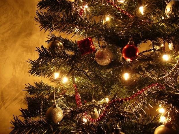 Жаңа жылға шырша құрмас бұрын...