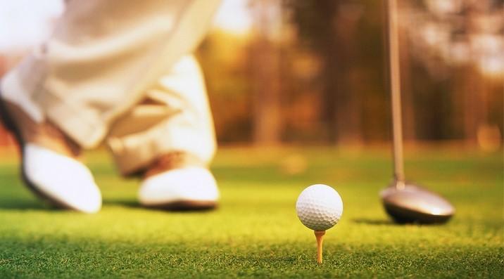 Жанашыр гольфшы (Тәмсіл)