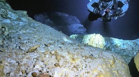 Су астынан ертеректе өмір сүрген сүтқоректілердің сүйектері табылды