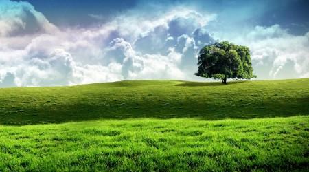 Суретке түсірудің 8 ережесі