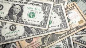 АҚШ долларының неше түрін білесіз?