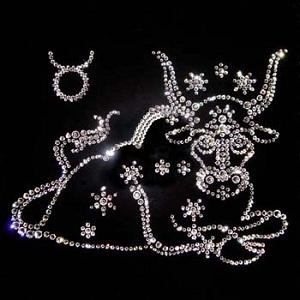 2012 жылға арналған жұлдыз-жорамал: Торпақ (20 сәуір - 20 мамыр)