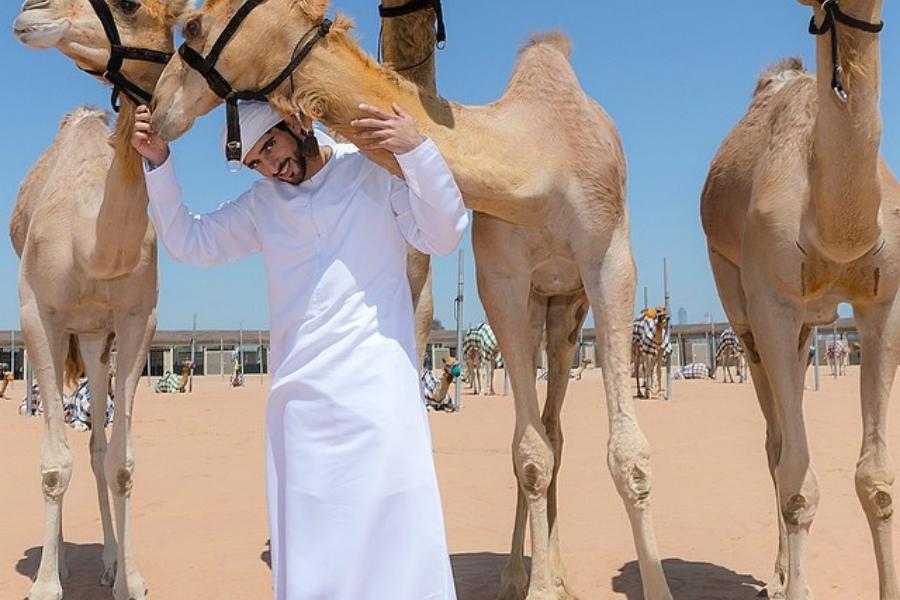 Дубай ханзадасының қызығушылықтары