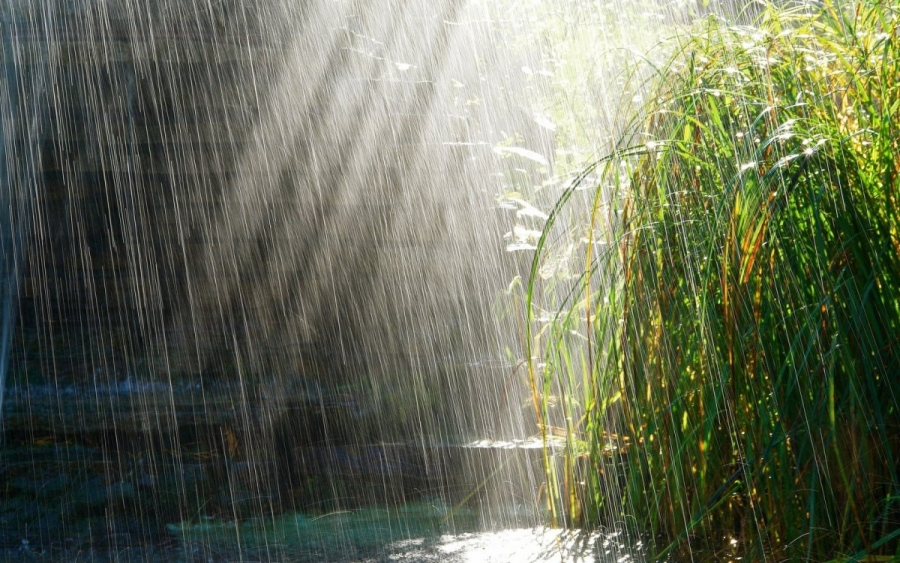 Ауа райы: Қазақстан аумағында демалыс күндері жаңбыр жауады