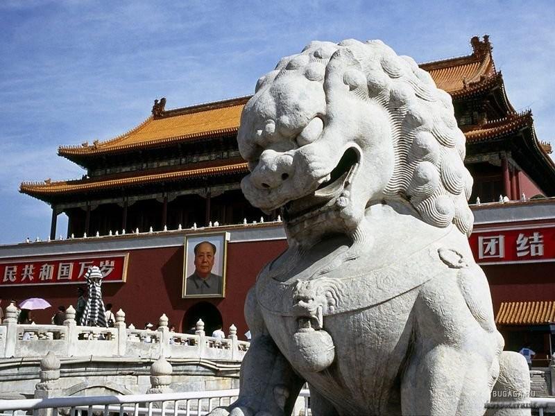 Әлемдегі ең көлемді роман Қытайда жазылды