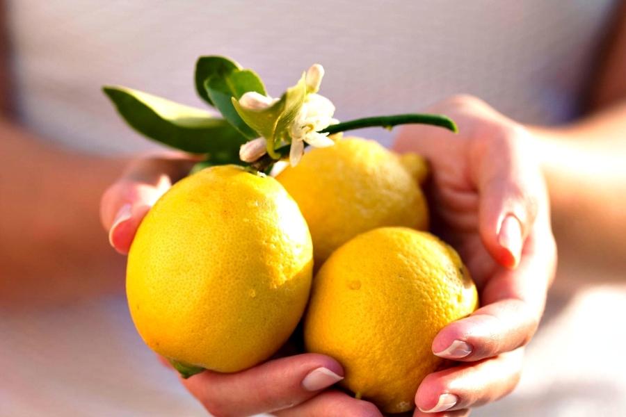 Лимон шырыны бүйректегі тасты ыдыратады