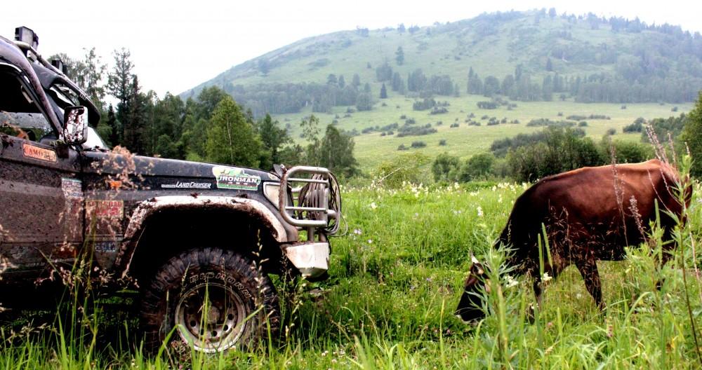 Алтай шыңын бағындарған джипперлер