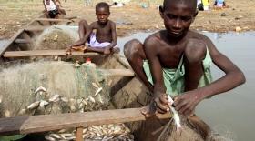 ХХІ ғасыр құлдары Мавританияда өмір сүреді