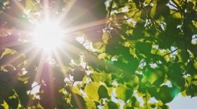 Ауа райы: Шығыста жаңбыр жауып, батыста күн ыстық болады
