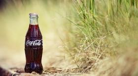 Кока коланы үй шаруасында пайдалануға бола ма?