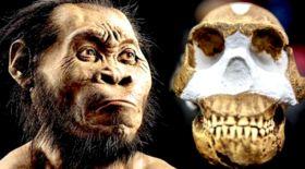 2,5 миллион жыл бұрын өмір сүрген адамның сүйегі табылды