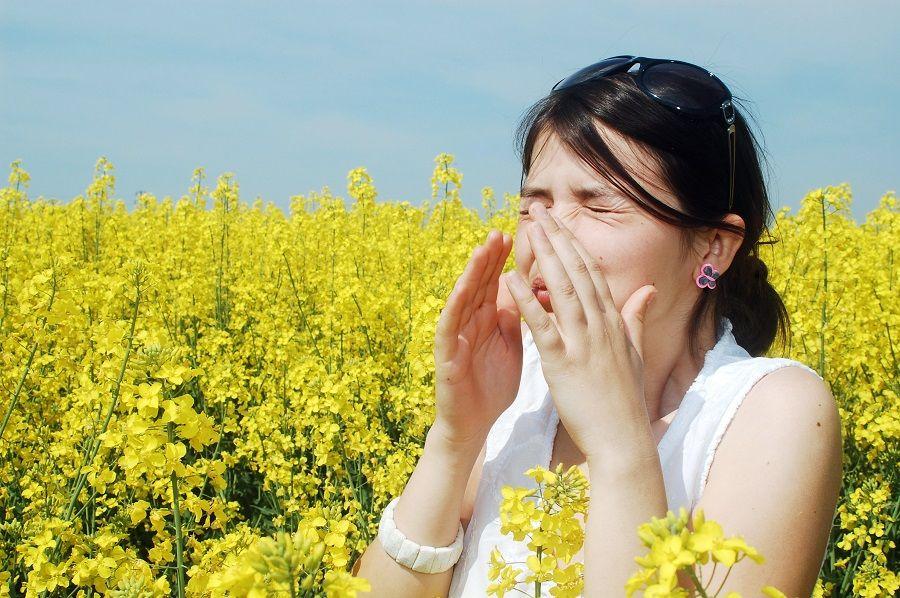 Аллергия — иммунды жүйенің дабылы