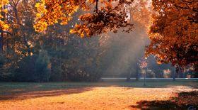 Ауа райы: Еліміздің басым аумағында күн жылынады