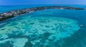 АҚШ-та су астында «жүзгіш» квадрокоптер сыналды (бейне)
