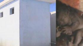 Дәретханадағы сәбиді шығарып алу сәті түсірілген эксклюзив кадрлар