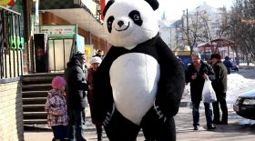 Астаналықтардың көңілін көтерген панда