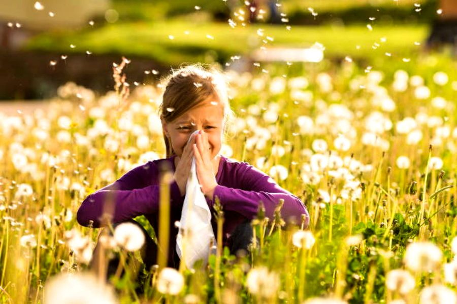 Балаларда жиі кездесетін аллергия түрлері