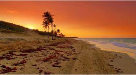 Кубаны көргіңіз келсе
