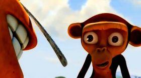 Қасыққа таласқан маймылдар (Видео)