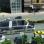 Қытайлықтар көлік кептілісін тудырмайтын автобус жасамақ (видео)