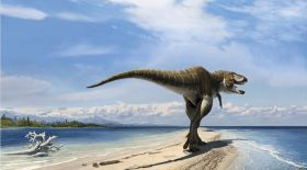 Боливияда динозаврдың алып ізі табылды