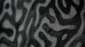 АҚШ дизайнері ауа ластанғанда түсін өзгертетін киім ойлап тапты