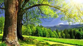 Еліміздің барлық өңірінде күн ыстық болады