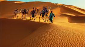 Сахара шөлі туралы қызықты деректер
