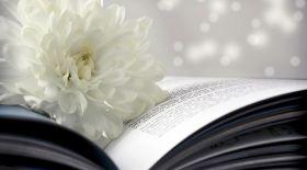 «Кітапсүйгіштің күнделігіндегі» тосын тыйымдар