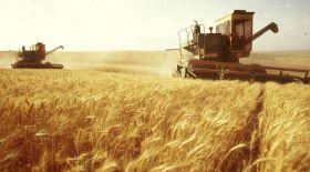 Аграрлық сектордың алға шығатын кезі алыс емес