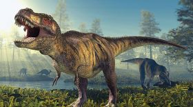 Қытайда 145 млн жыл бұрынғы динозаврлардың ізі табылды