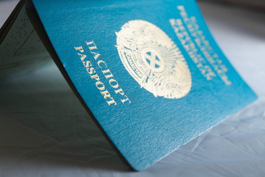 Әлемдік паспорт неліктен 4 түсті болады?