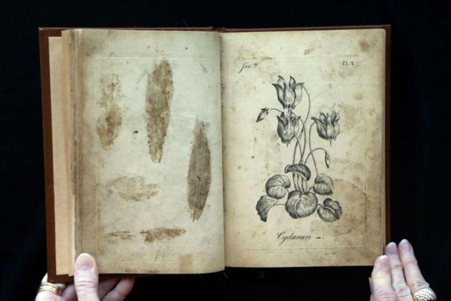 257 жылдық тарихы бар бояу кітапшасы табылды
