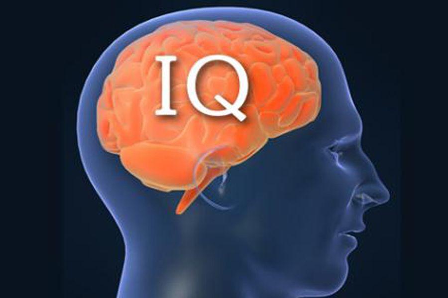 IQ немесе зияткерлік өлшемі қандай?