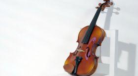 Классикалық музыка – дертке дауа