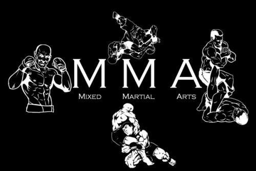 Қазақстандық сарбаздар ММА 2012 әлем кубогы турнирінде жеңіске жетті