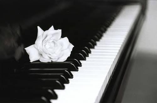 Әлемдегі ең үлкен және ең кішкентай пианино