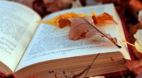 Бір аптада бір кітапты қалай бітіруге болады?